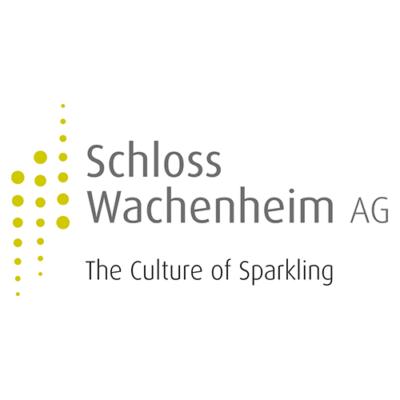 Schloss Wachenheim